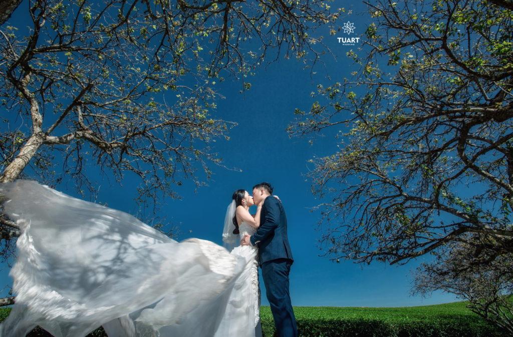 Album ảnh cưới đẹp ở Mộc Châu
